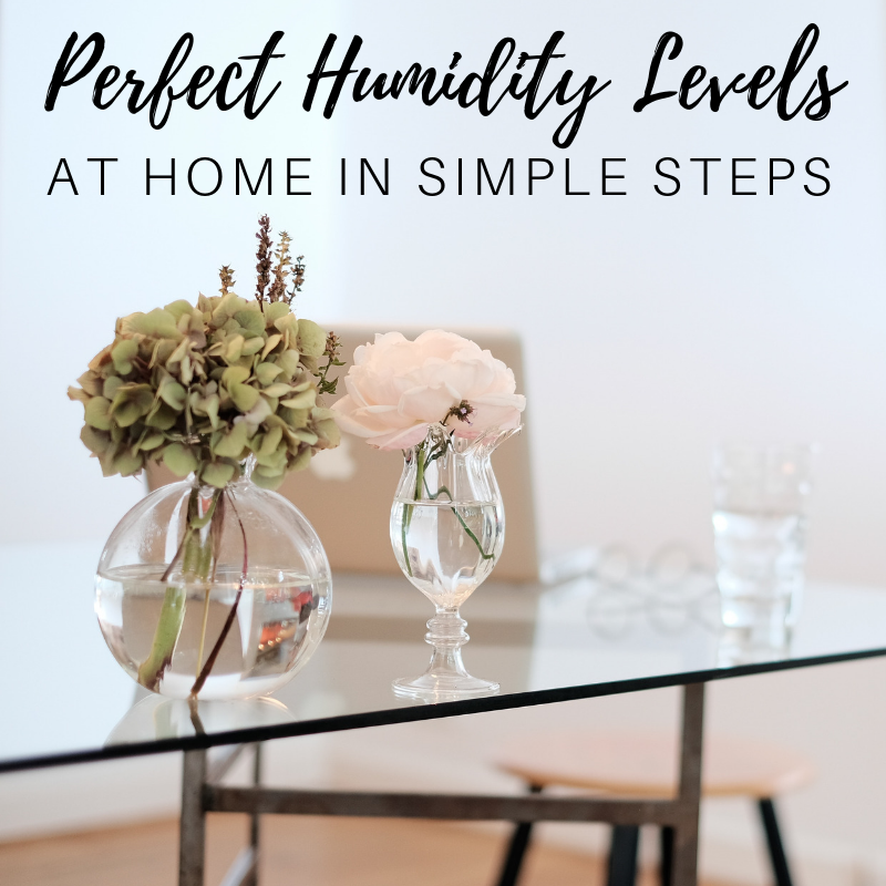 perfect humidity levels at home in simple steps
